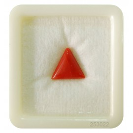 Natural Red Coral Triangular 4+ 2.5ct
