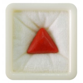Certified Red Coral Premium 16+ 10ct