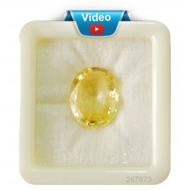 Yellow Sapphire Sup-Pre 18+ 11.15ct